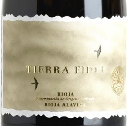 Tierra Fidel Blanco